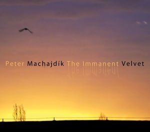 Composer Peter Machajdik