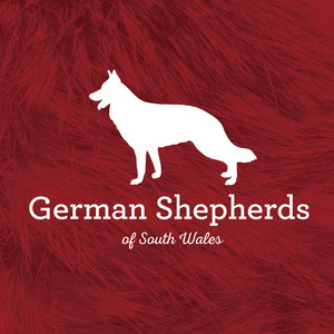 German Shepherds of South Wales