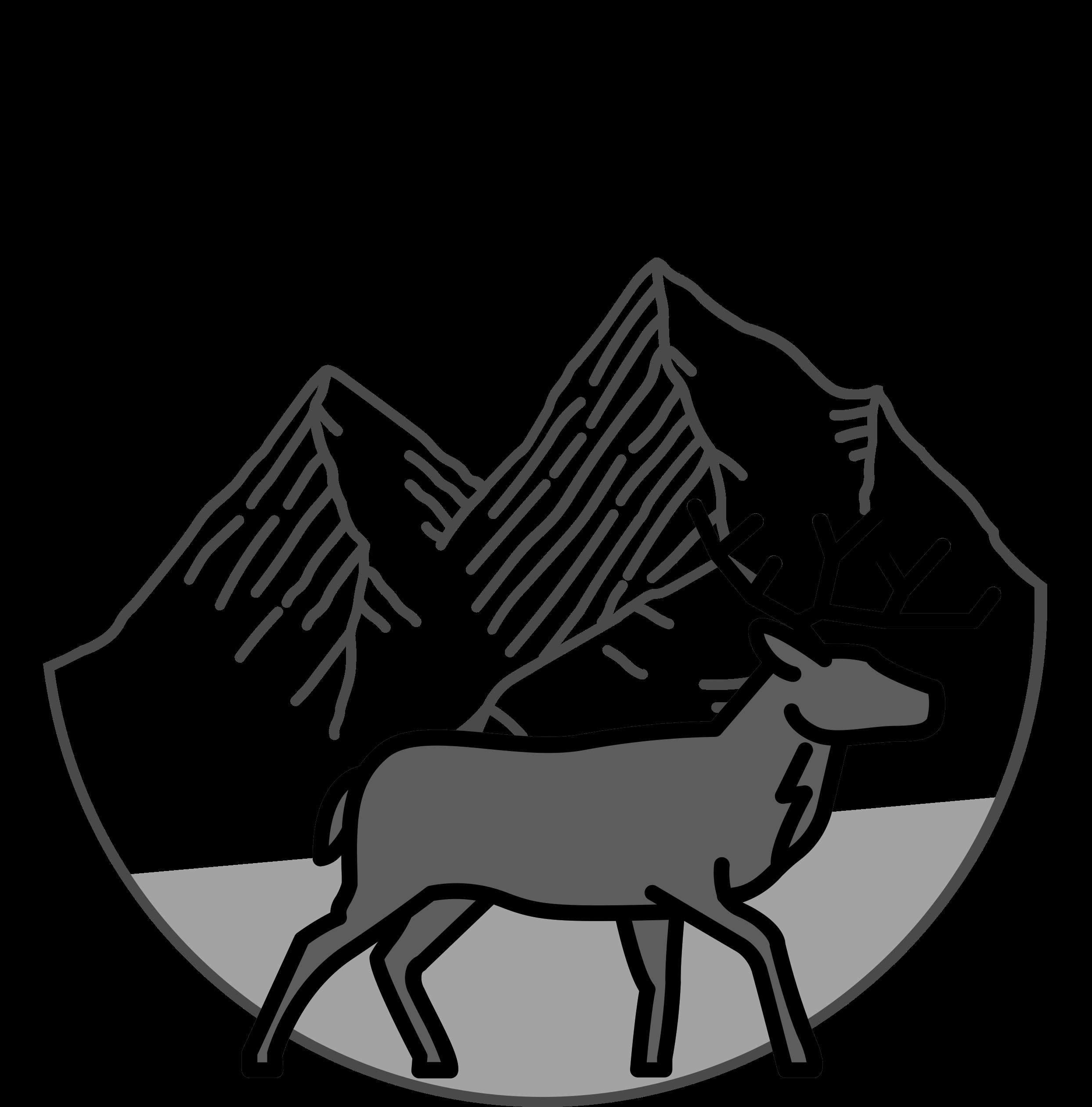Gipfelhirsch